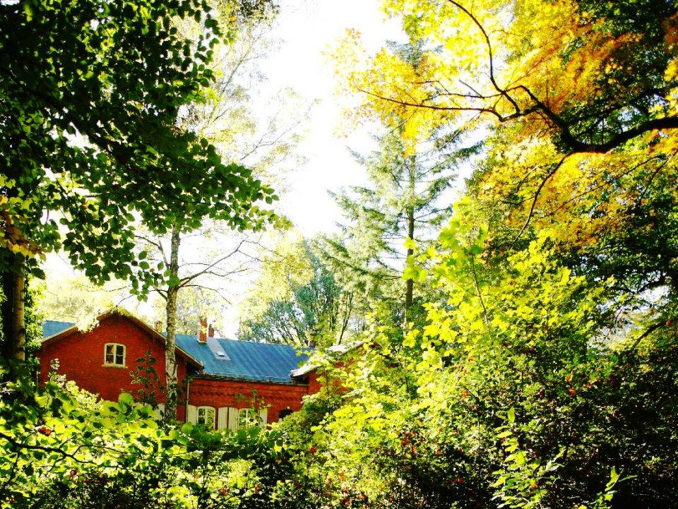 Ein rot geklinkertes Haus inmitten von herbstlichen Bäumen