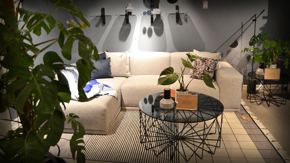 Ein eingerichtetes Wohnzimmer umgeben von Pflanzen.