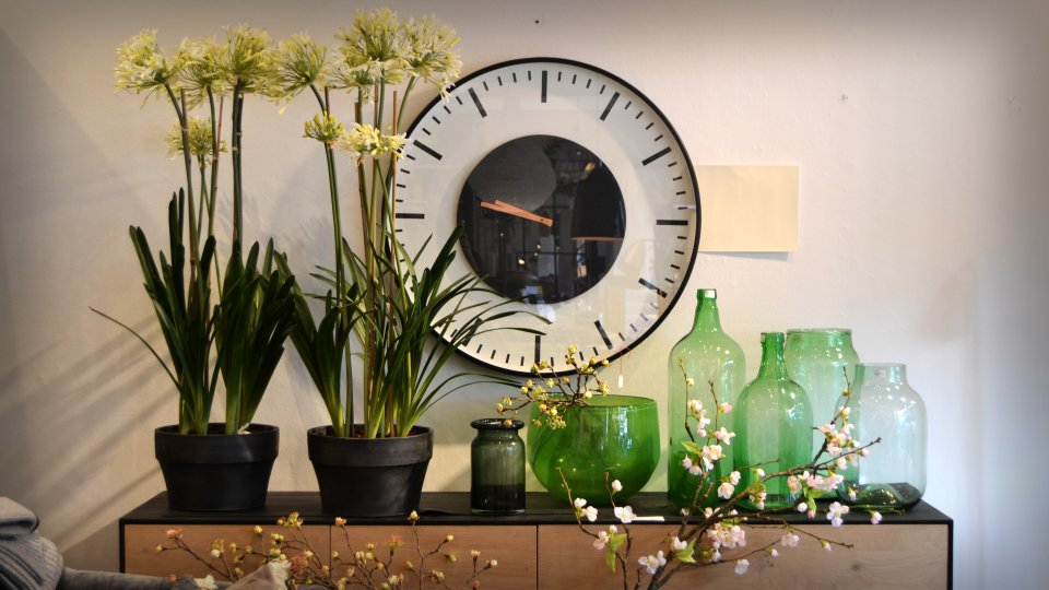 Einige Pflanzen und Vasen vor einer Wanduhr.