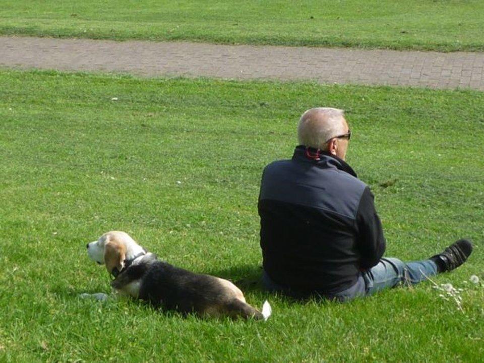 Mann sitzt mit Hund auf einer Wiese