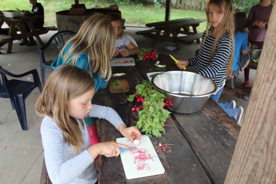 Kinder schneiden Radieschen und Frühlingszwiebeln für einen Salat.
