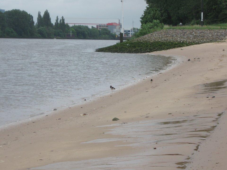 Ein Sandstrand am Fluss.